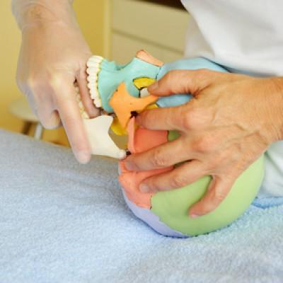 Die CMD Therapie, aus der Sicht des Physiotherapeuten